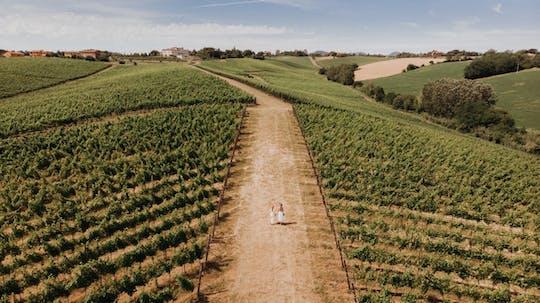Spazieren Sie durch den Weinberg und probieren Sie den Weinkeller Umberto Cesari