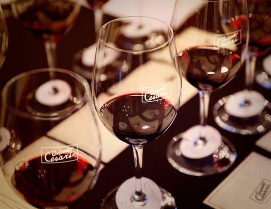 Verkostungsstunde im Weinkeller Umberto Cesari