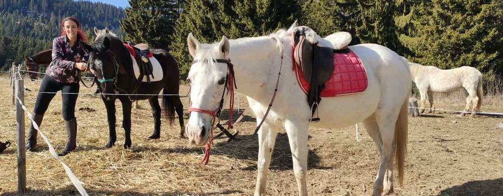 Horse-back riding experience on the Black Sea in Kranevo