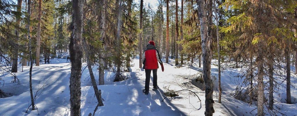 Randonnée en raquettes à travers la Laponie suédoise