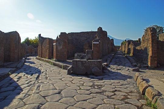 Pompeii Half-Day from Naples