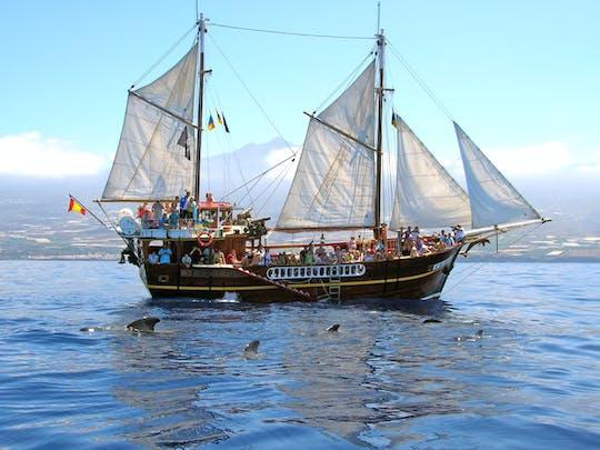 Flipper Uno Boat Trip