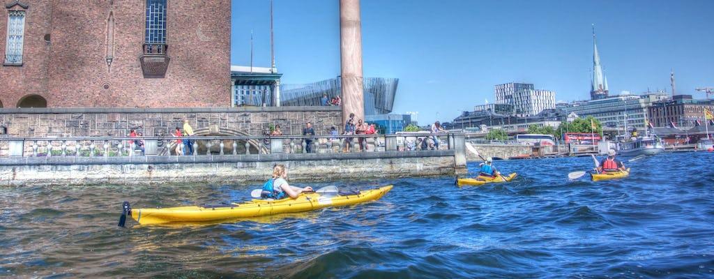 Giro del centro di Stoccolma in kayak