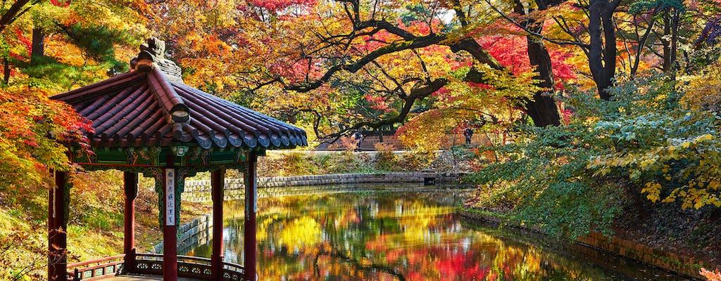 Visita al Palacio Changdeokgung, declarado Patrimonio de la Humanidad por la UNESCO