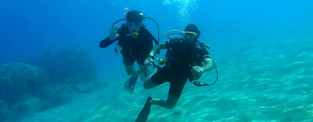 Discover Scuba Diving Small Group Tour from Limassol