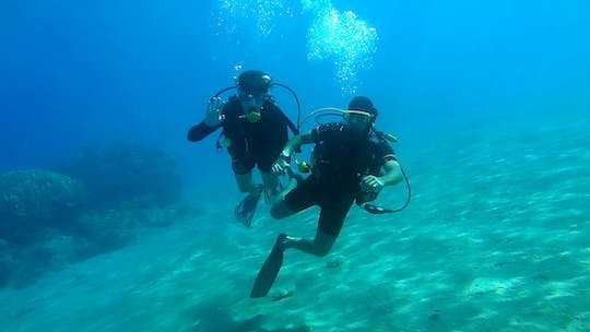 Discover Scuba Diving from Limassol