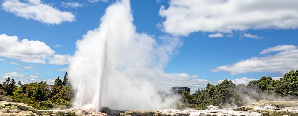 Hobbiton and Rotorua including Wai-O-Tapu - Small-Group Tour from Auckland