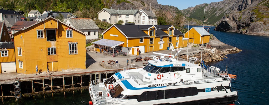 Lofoten sightseeing and shuttle boat