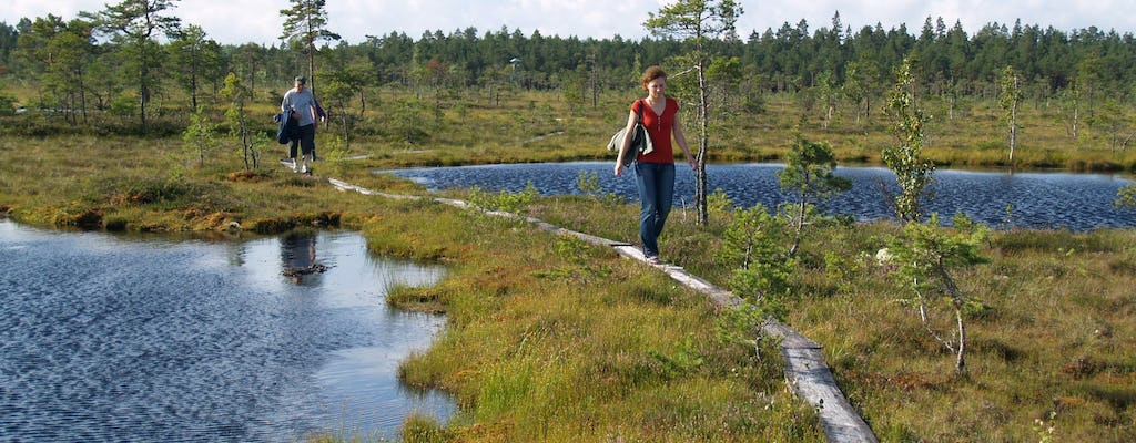 Soomaa national park canoeing and walking tour