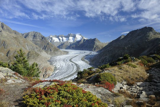 Aletsch Glacier round-trip cable car ticket to View Point Moosfluh