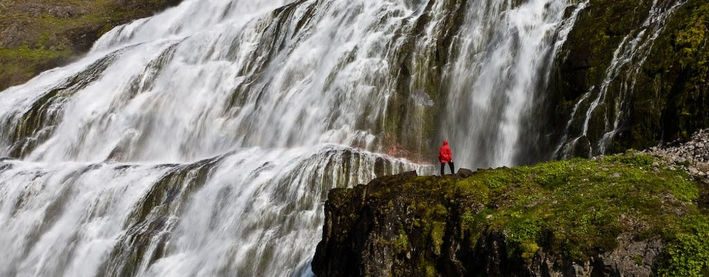 Unisciti alla splendida combinazione della cascata Dynjandi e dei villaggi