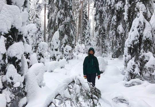 Wycieczka do zimowej krainy czarów