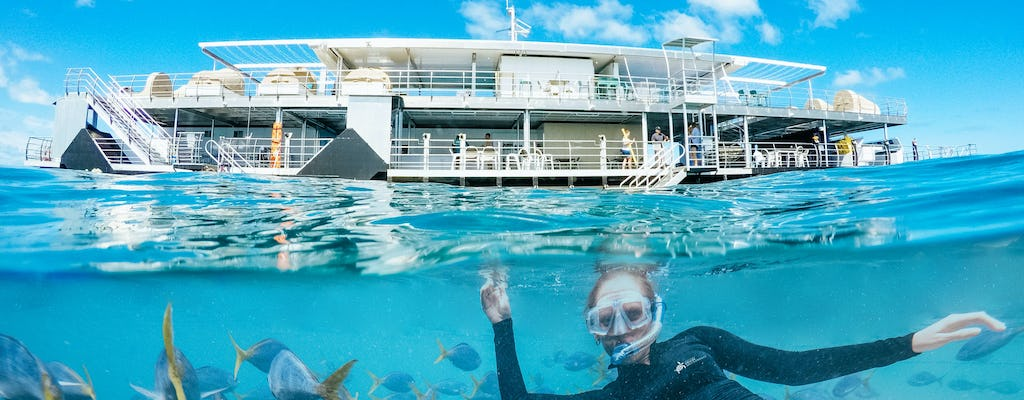 Great Barrier Reef adventure