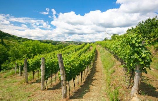 Excursión de un día a las colinas vinícolas de Goriska Brda desde Liubliana