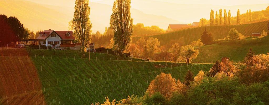 Excursión de un día a la región vinícola de Maribor, Ptuj y Stajerska desde Bled