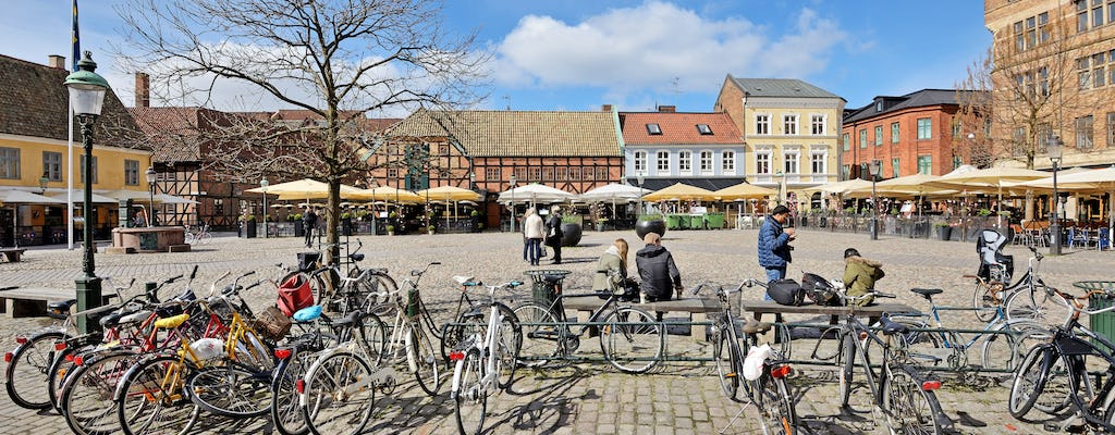 Copenhagen to Malmö one-day tour