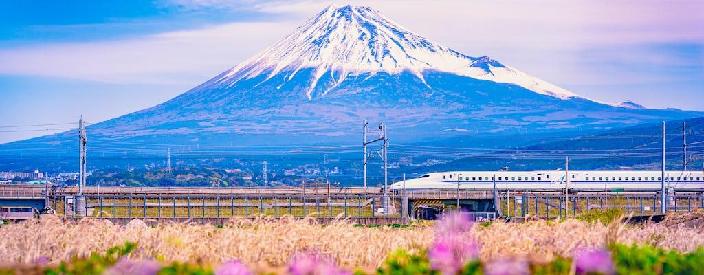 Trem-bala e Monte. Excursão gastronômica famosa por Fuji