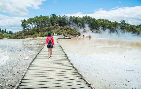 Rotorua Highlights including Wai-O-Tapu - Small Group Tour from Auckland