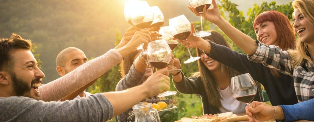 Вино холмы Горишка Брда однодневной экскурсии из Бледа