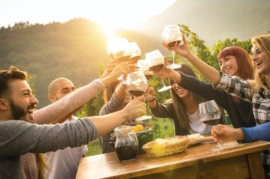 Вино холмы Горишка Брда однодневную поездку от побережья
