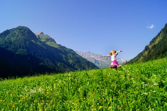 Salzburg private full-day Sound of Music tour with hiking trail