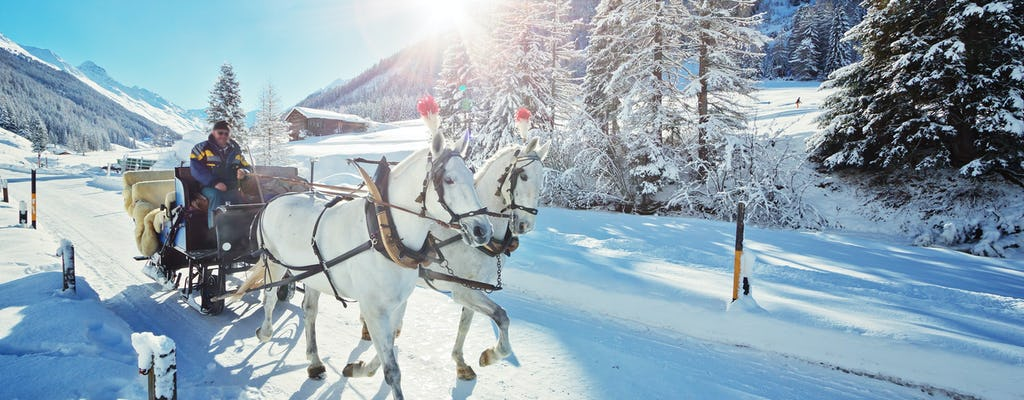 Private half-day tour in the Alps with a horse-drawn sleigh ride from Salzburg
