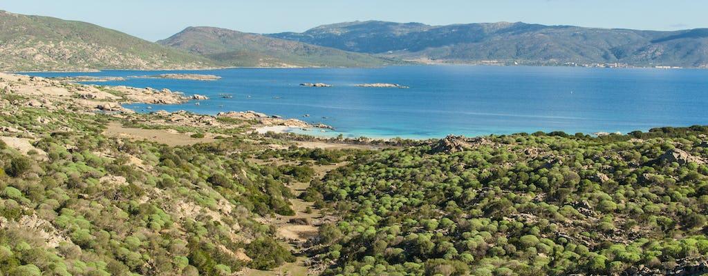 Full-day Asinara National Park tour