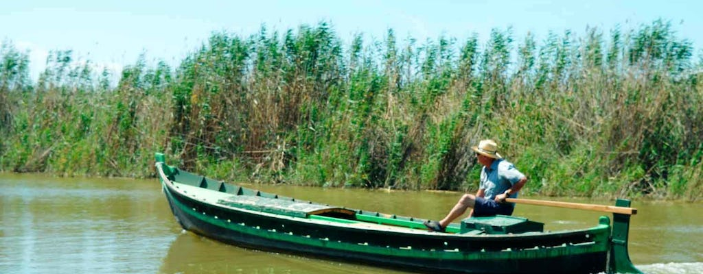 Valencia tour and Albufera lagoon excursion