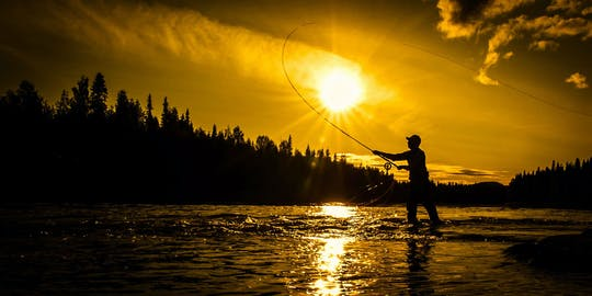 Full-day fishing adventure: learn how to fish like a Fin