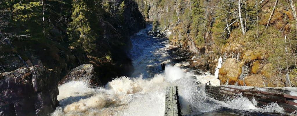 Escursione di un giorno alle cascate Auttiköngäs