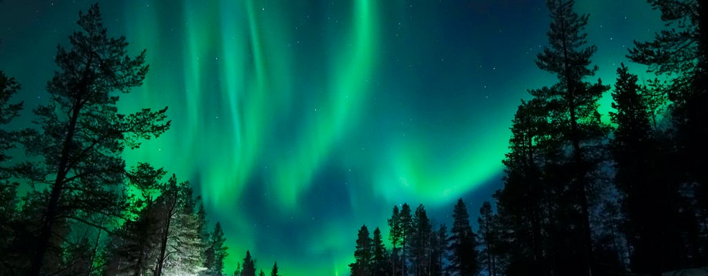 Special Aurora Borealis photo tour with light BBQ
