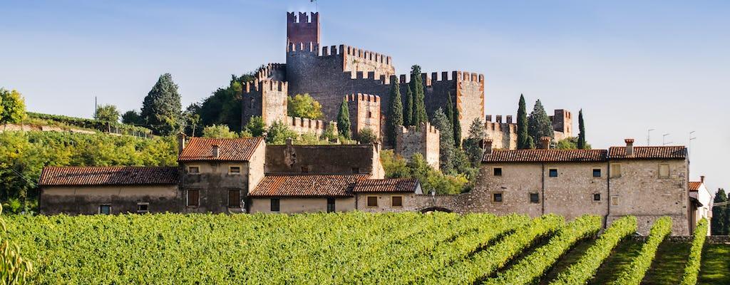 Excursión de un día de Verona a Soave con catas de vino.