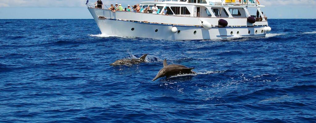 La Gomera Whale & Organos Watching Cruise 3 hours