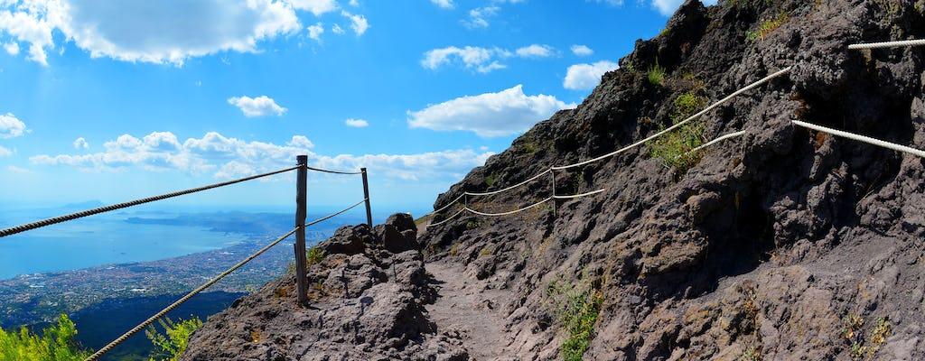 Całodniowa wycieczka na Mt. Wezuwiusz z degustacją wina
