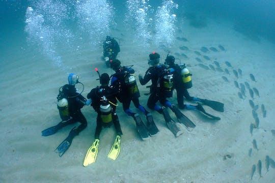 Esperienza di immersioni subacquee a Tarragona
