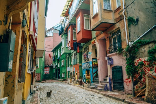 Best of Istanbul: Private Guided Tour to Fener-Balat