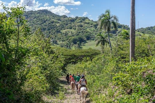 Dominican Mountain Horseback Ride