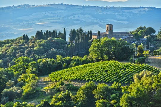 Дегустация вин Брунелло и обед в тосканском замке в Монтальчино