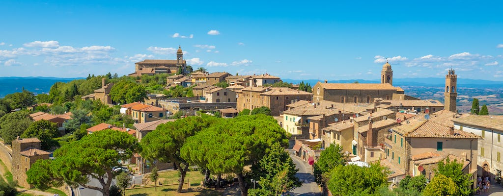 Winery tour and tasting experience in Montepulciano