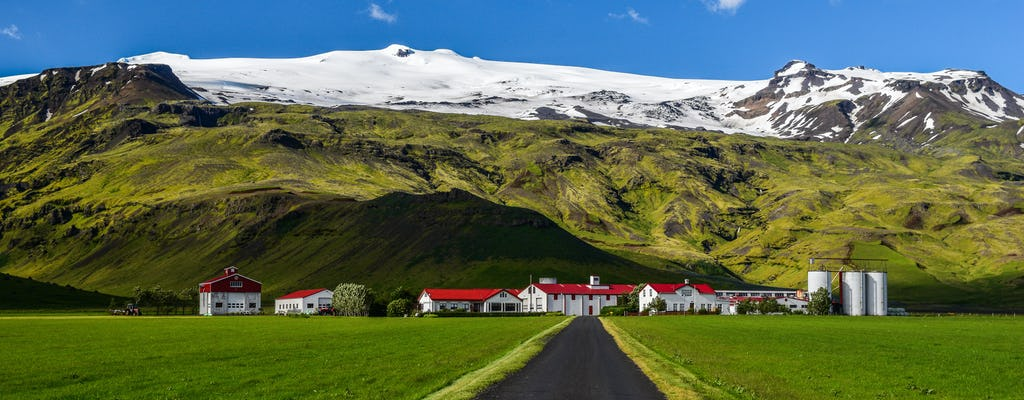 Südküste und Eyjafjallajokull Tagestour