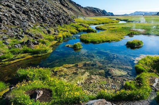 Tour privado a Landmannalaugar y volcán Hekla