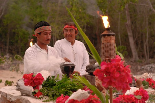 Mayan Night: Temazcal and steam bath