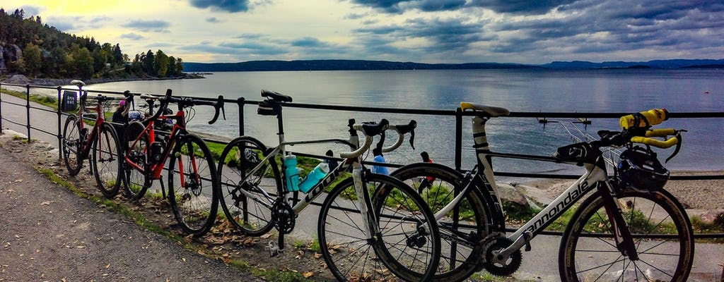 Oslo by bike city tour