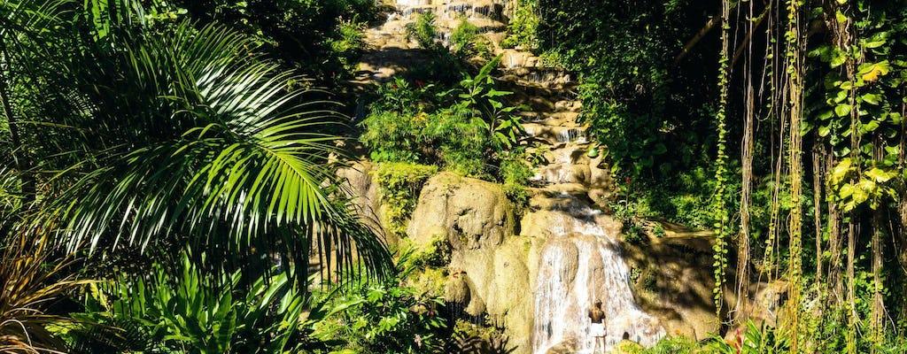 Konoko Wasserfälle & Blaues Loch Tour
