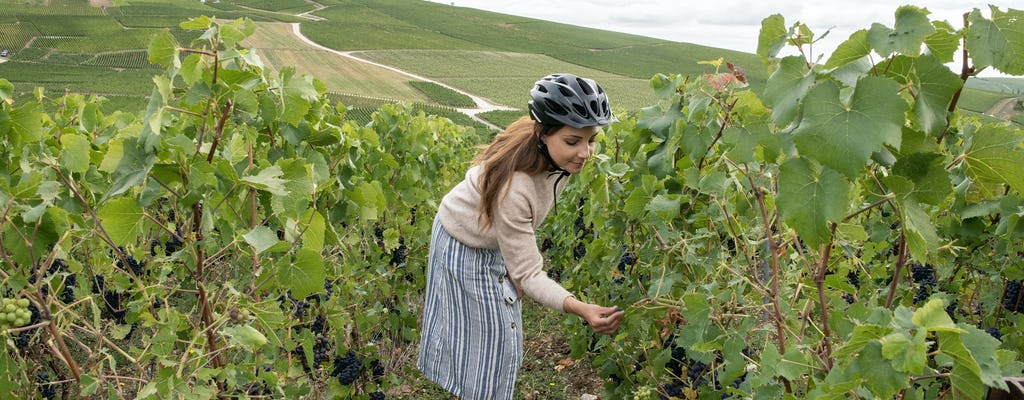 Een zelfgeleide e-biketour van 4 uur naar Hautvillers