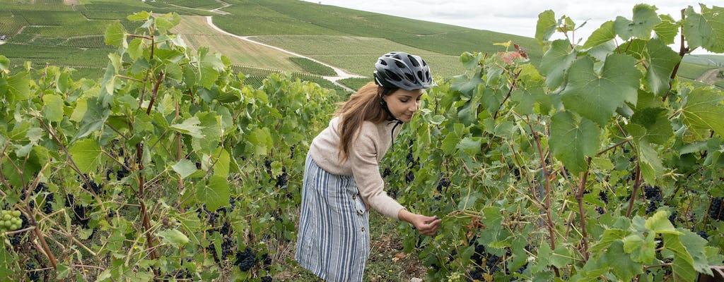 A 4-hour self guided e-bike tour to Hautvillers