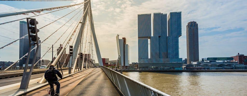 Tour a pé particular de introdução a Rotterdam