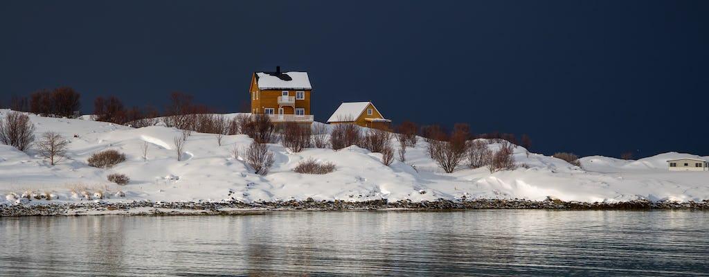 Tour de paisajes árticos invernales en grupos pequeños