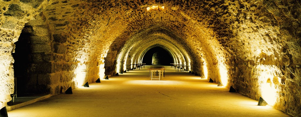 Excursão privada de dia inteiro aos castelos de Karak e Shobak saindo de Amã