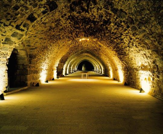 Tour privado de un día completo a los castillos de Karak y Shobak desde Amman